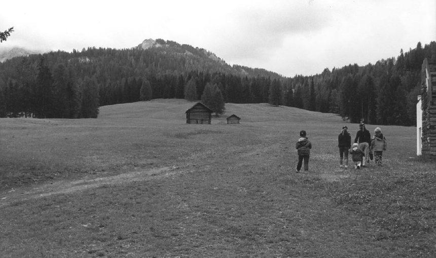 Progetto_Paesaggio XV ciclo - #trentinosumisura Ri-abitare la montagna