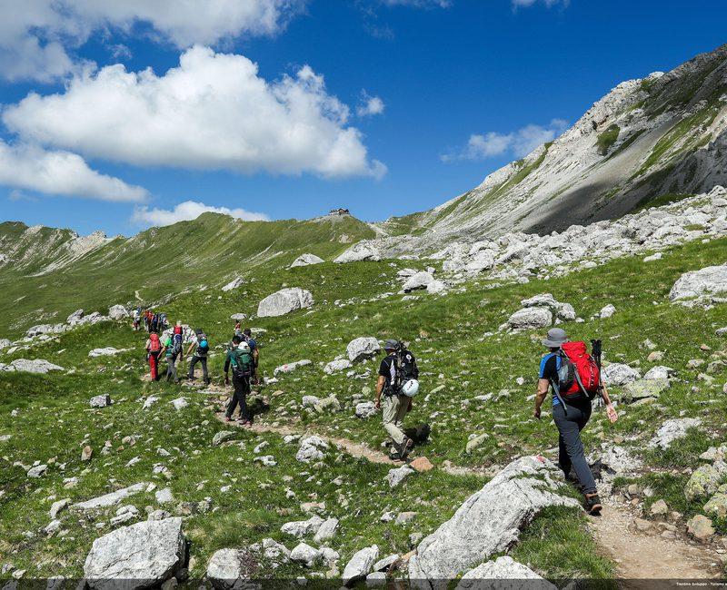 adm - accademia della montagna