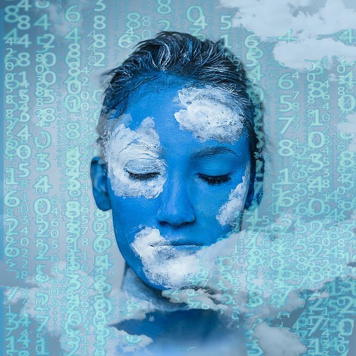 Educazione civica digitale - Come insegnare la competenza informativa a scuola e in biblioteca